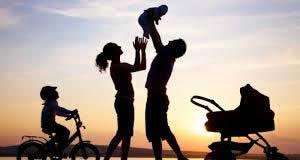 Заштита породице